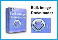 Bulk Image Downloader Crack 5.34 With Activation Code Full Download